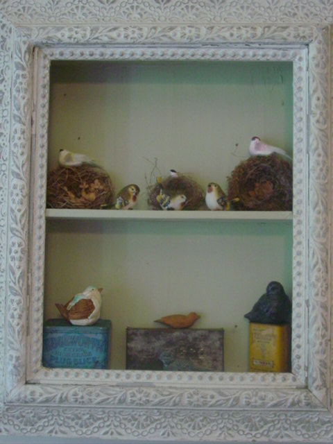 Blog bird shelf