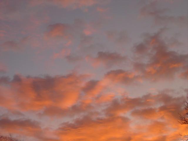 Blog early morning jan 09