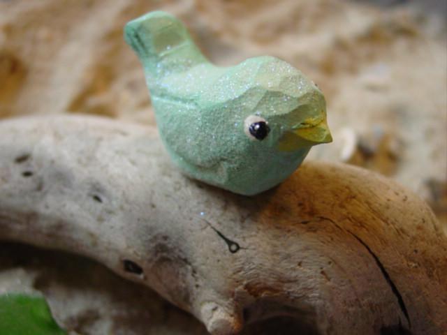 Blog bird aqua3