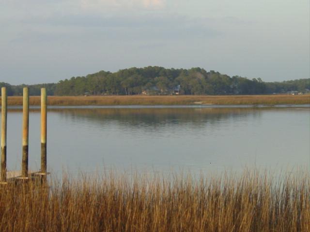 Blog winter marsh2