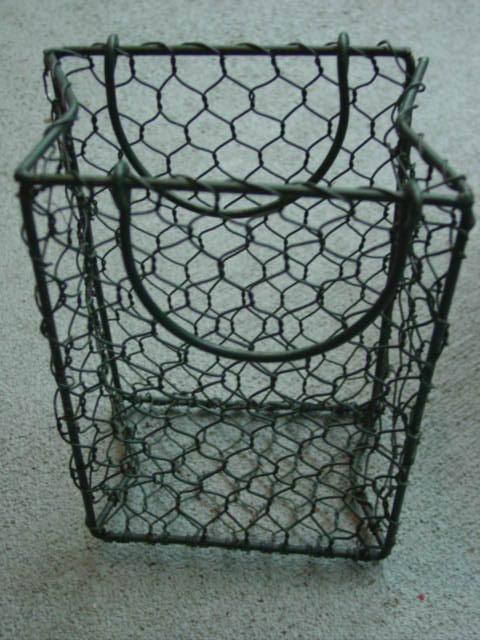 Blog basket for succulents