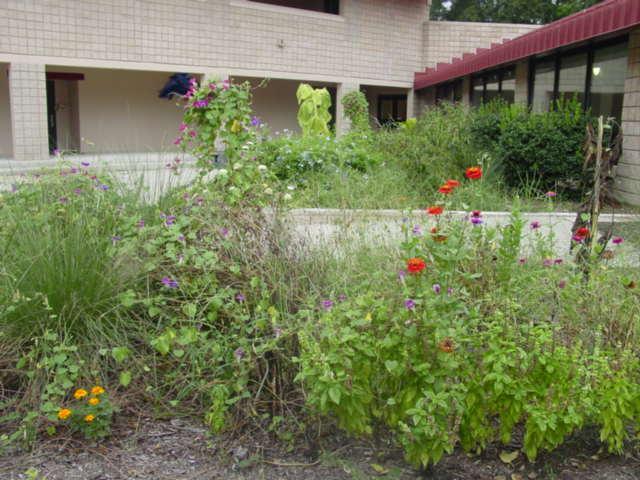 Court yard before