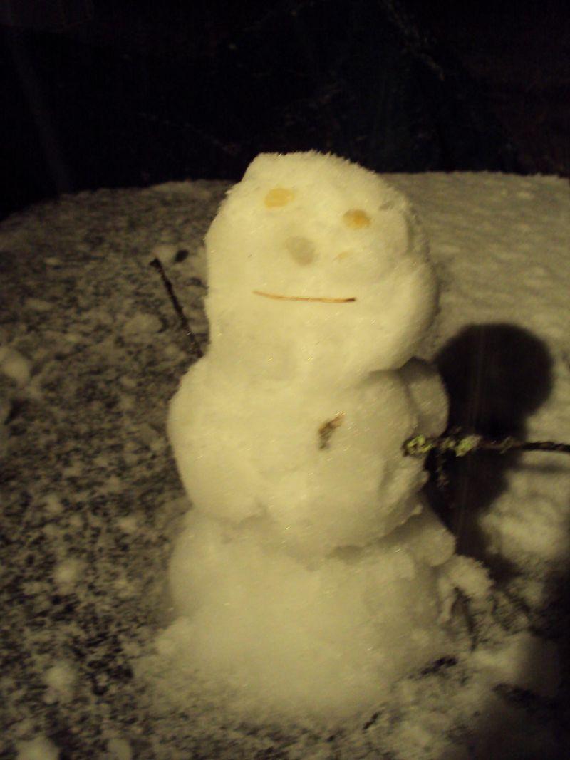 Beaufort snowman feb2010