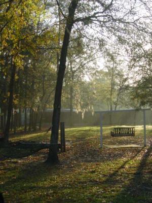 Misty_mornings