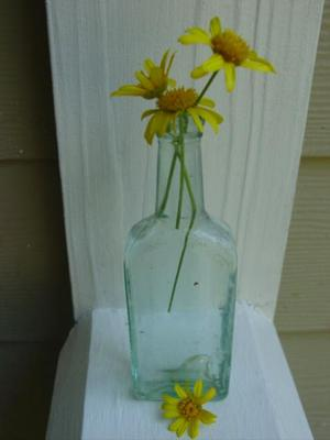 Raleigh_bottle